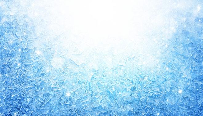Quattro Foods install blast freezing facilities