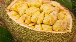 Vegan Alternatives - Jackfruit